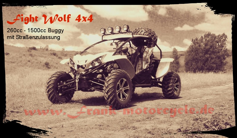 Buggy Fight Wolf 260-1500cc 4x4 UTV Side by Side mit Straßenzulassung